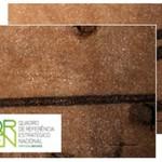 Aprovação Projeto QREN Cordyp